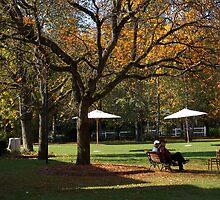 Chatting under the tree by Ruben De Wasch