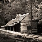 Smoky Mountain Hideaway  by Gary L   Suddath