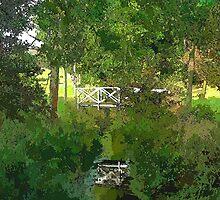 Small wooden bridge over river by Ron Zmiri