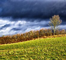 Country landscape with dramatic cloudscape by Ron Zmiri