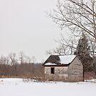 Lonely Cabin by AbigailJoy