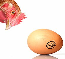 chicken inside by Diana Calvario