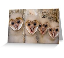 Motley Crew Greeting Card