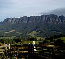 photoj-Tasmania, Mt Roland Kentish Country by photoj