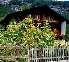 Swiss Cottage by georgiegirl