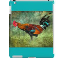 Broad Wing of Time iPad Case/Skin