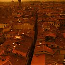 The roofs of Lucca by bsilvia