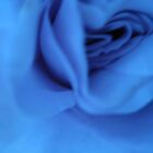 rose by ginny