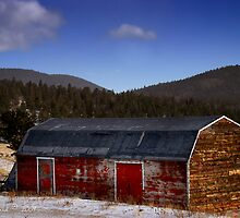 The Old Barn by John  De Bord Photography