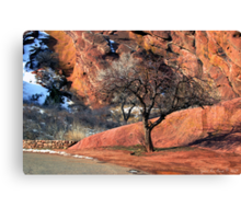 Red Rocks One Tree Hill Canvas Print