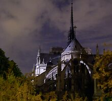Notre Dame through the Night by Ponder