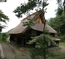 Takayama - Hida No Sato - Traditional regional houses by Trishy