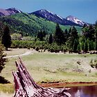 Lockett Meadow by PatGoltz