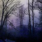 Sleep of the Trees by Ann Eldridge