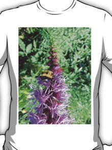 Macro Bumble Bee On Purple Flower in Garden T-Shirt