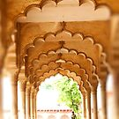 Agra Fort - India by Coralie Pittman
