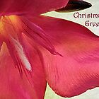 "Oleander ""Christmas Greetings"" ~ Greeting Card by Susan Werby"