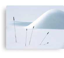 Winter still life Canvas Print