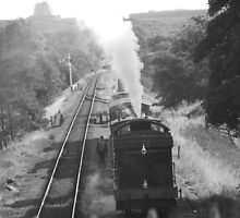 Goathland Steam Train by hjwilkie