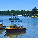 Boats For Hire. by Margaret Stevens