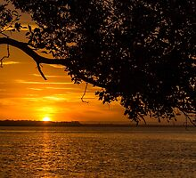 Shaded Sunset by JLOPhotography