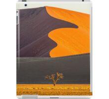 Namib-Naukluft National Park of Namibia iPad Case/Skin