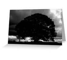 Mt Mee Sunset Silhouette Greeting Card