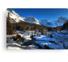 Snowy creeks (HDR) Canvas Print