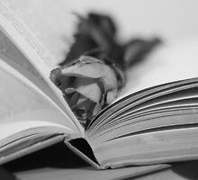 Romantic Novel by DanniiLevi