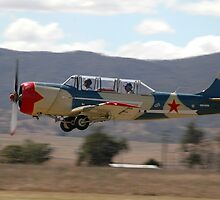 Yak-52 @ Toogoolwah Fly-In, Queensland, Australia, 2008 by muz2142