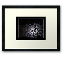 U.G.O. Framed Print