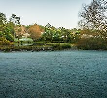 Frosty Morning by Russell Charters