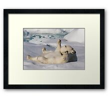 Polar Bear Cubs Framed Print