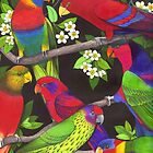 Lories and Lorikeets by Carolyn  McFann