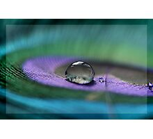 :: Serene :: Photographic Print