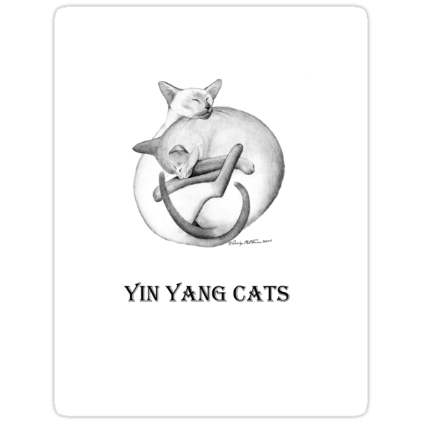 Yin Yang Siamese Cats by Carolyn  McFann