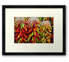 Colorful Chile Ristras Framed Print