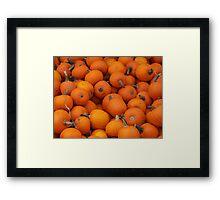 Baby pumpkins Framed Print