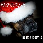 Ho Ho Bloody Ho!!!! by Sue Wilson (Kane)