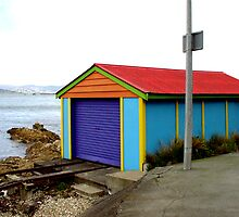 If I Was A Shed..... by NZaineDesign