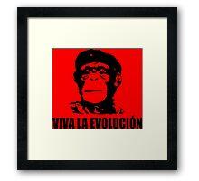 Viva La Evolucion Framed Print
