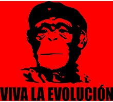 Viva La Evolucion Photographic Print