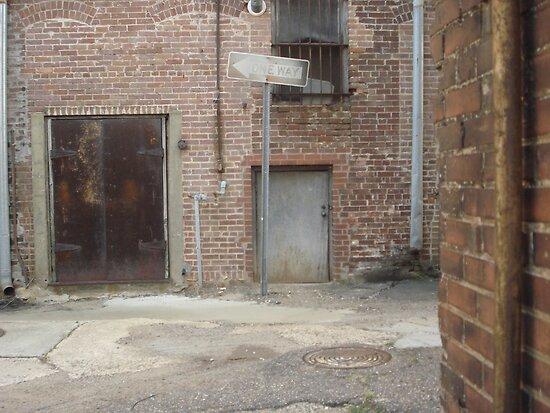mysterious little door by kaylarenee