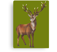 Grand Stag Canvas Print