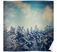Snowy Winter Morning Poster