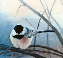 Black Capped Chickadee by Brenda Thour
