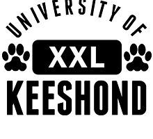 University Of Keeshond by kwg2200
