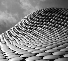 Bullring by David White