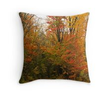 My Road to Happyness Throw Pillow