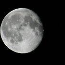 full moon by panthrcat
